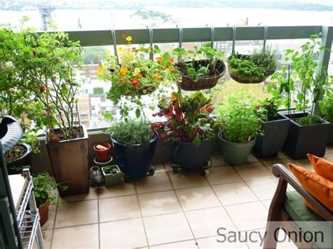 Balcony Patio by Balcony Gardening Tips India Balcony Gardening Ideas For