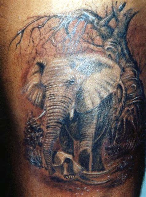 elephant dick tattoo k 214 pr 220 alti catalouge