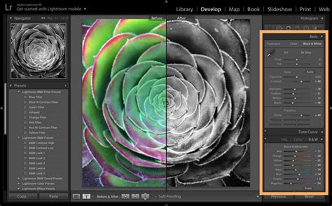 black and white make what color how to create stunning black white photos adobe