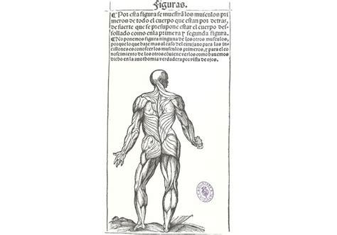 libro spain since 1812 m 225 s de 1000 ideas sobre flebotom 237 a en oficio de enfermera cardiaca consejos para