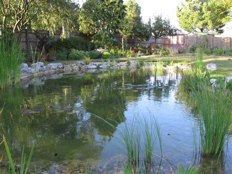 large backyard pond top 28 large garden pond image gallery large backyard