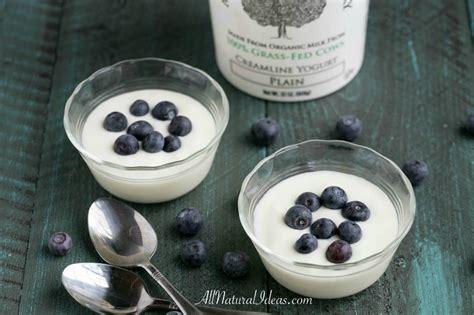 carbohydrates yogurt low carb yogurt options for a keto diet all ideas