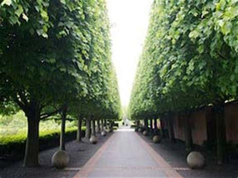Chicago Botanic Garden Wedding Cost Chicago Botanic Garden Wedding Cost Garden Ftempo