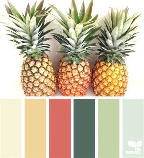 pineapple hues design seeds