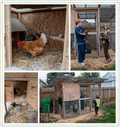 themed chicken coop ideas chicken coop how to