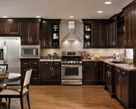 Kitchen Remodel Dark Cabinets by Dark Cabinet Kitchens Home Design Ideas Pictures Remodel