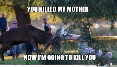 Adult Memes 18 - the gallery for gt funny deer hunting cartoons