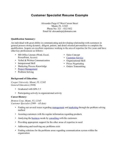Resume Summary For Customer Service by Professional Summary Resume Exles Customer Service