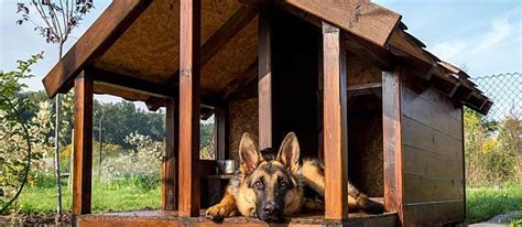 free dog house plans with porch free dog house plans with porch unique 20 the best free diy dog house plans the