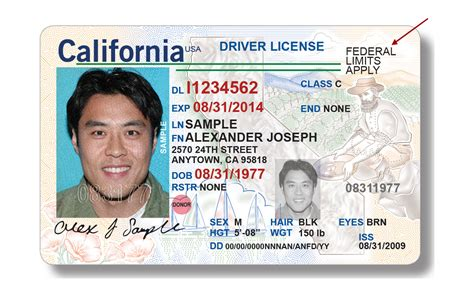 california id card template dmv to offer real id driver license and id cards january 22