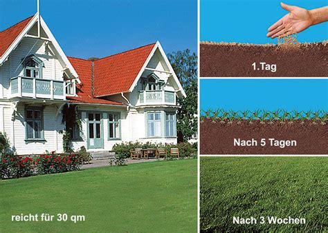 Garten Ideen Deko 3288 by Wunder Rasen 1kg Versandhaus Jung