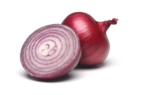 onion in the bedroom onions in bedroom when sick www redglobalmx org