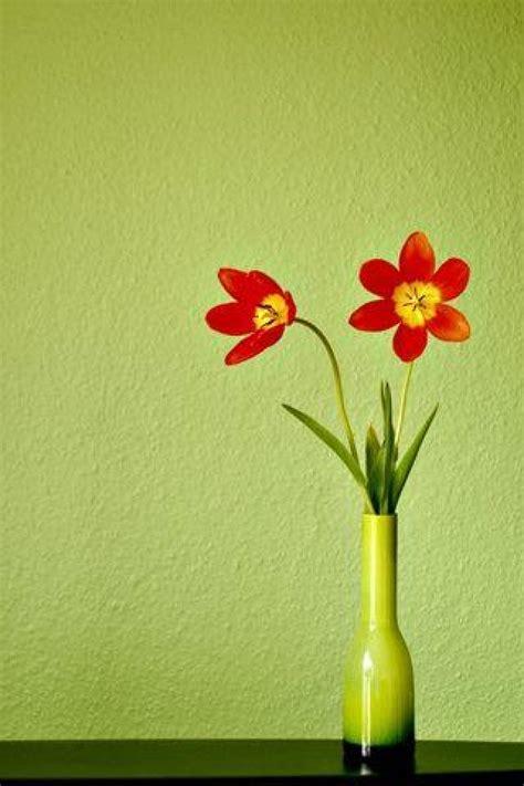 wallpaper flower pot flower pot wallpaper wallpapersafari