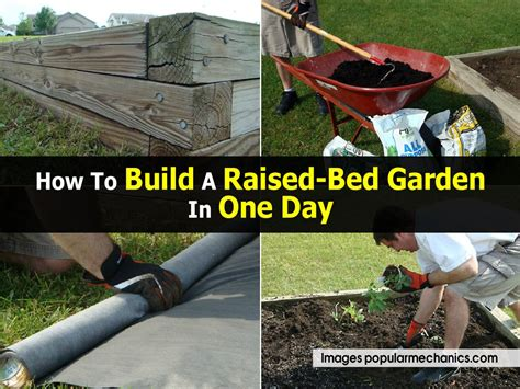 how to build a day bed how to build a raised bed garden in one day