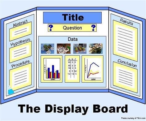 poster board layout for science fair project 25 best ideas about science fair board layout on