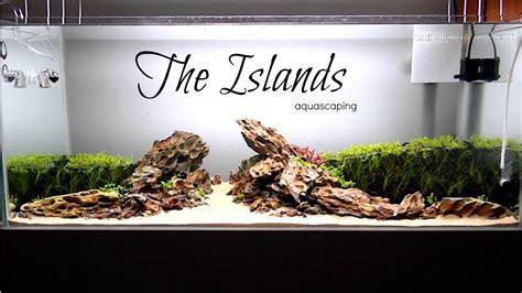 aquascape youtube aquascaping the islands youtube