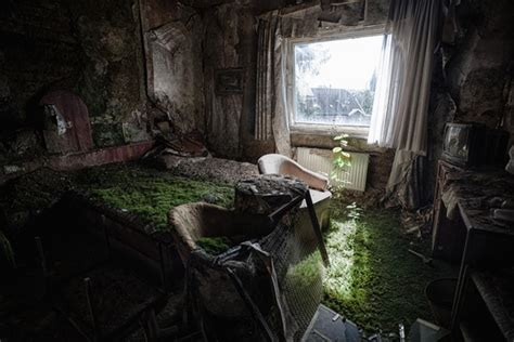 The Sod Room by In A Bed Of Grass Room In A Burned Out And Abandoned