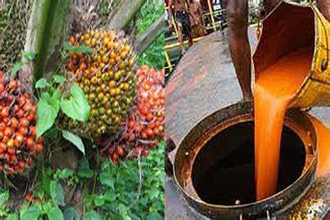 Minyak Kelapa Sawit Cpo satu harapan kemendag tetapkan harga patokan ekspor