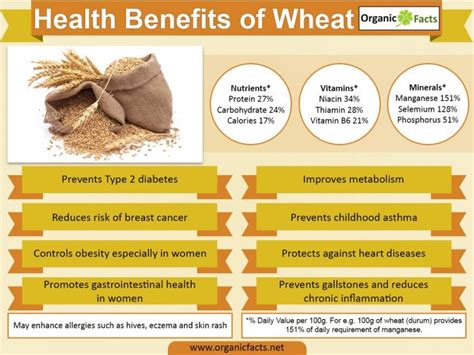 whole grains benefits 11 wheat benefits organic facts