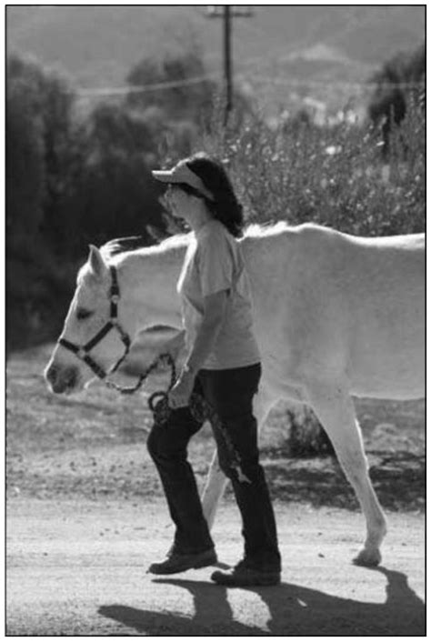 kuda dan berkuda menuntun dan menalikan kuda