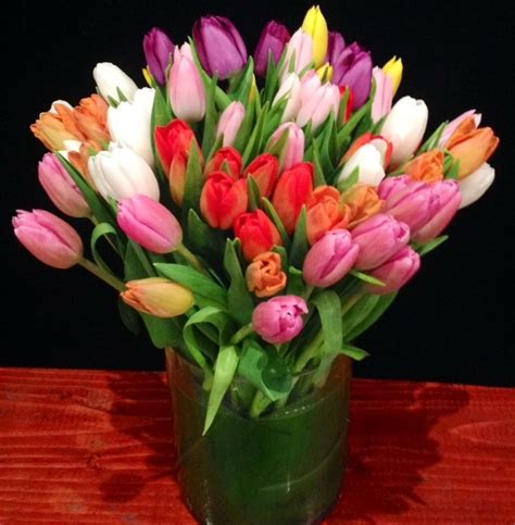 tulips arrangements tulip flower arrangements quotes