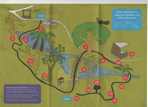 Brisbane Botanical Gardens Map Hide N Seek Children S Trail Brisbane Botanical Gardens Brisbane