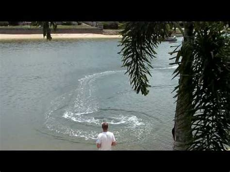 very fast rc boats very fast rc boat catches crab pot youtube