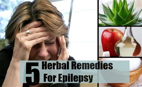 home remedies for seizures 5 herbal remedies for epilepsy treatments cure for epilepsy find home remedy