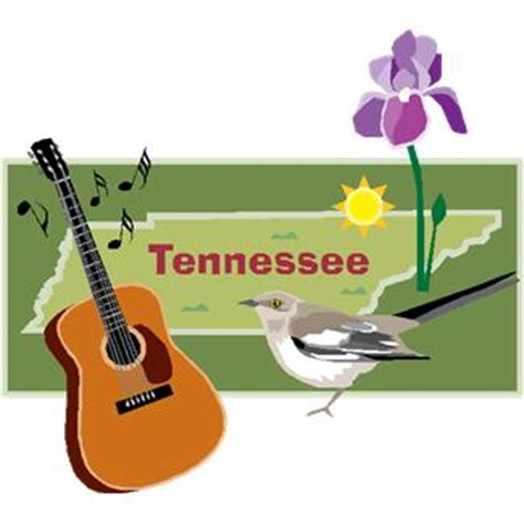 Tennessee State Flower by Mystery Books That Take Place In Tennessee The Cozy