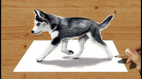 husky puppy drawing 3d pencil drawing siberian husky puppy speed draw jasmina susak