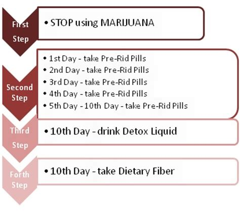 10 Day Marijuana Detox by 10 Day Detox Toxin Rid Review Detox Marijuana Fast