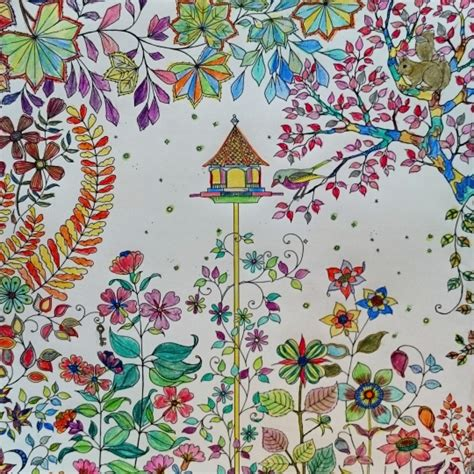secret garden colouring book coloured in in living color my obt