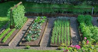 Vegetable Garden Image by Gallery For Gt Vegetable Garden Pictures
