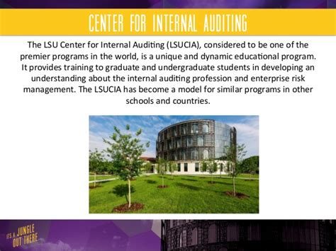 Lsu Flores Mba Career Services by Lsu Flores Mba Audit Specialization
