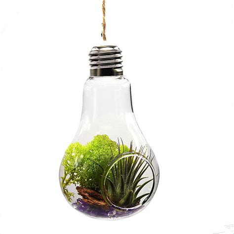 Plants In Water Vase by Home Office Wedding Decor Glass Bulb Shape Flower Water