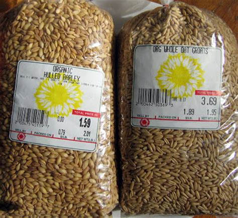 whole grains for 9 month fanatic cook with grains
