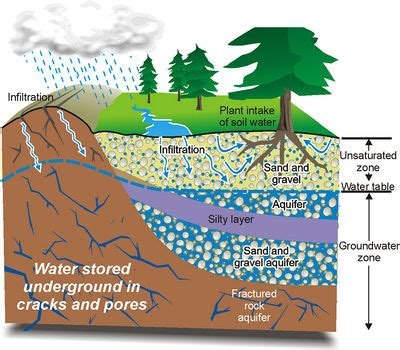 where is the water table located groundwater microbewiki