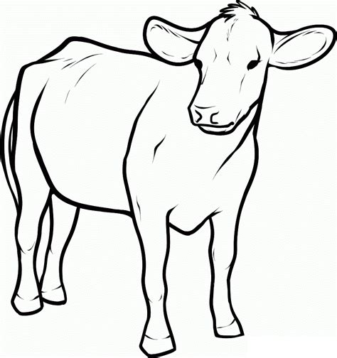 realistic cow coloring page cow coloring pages