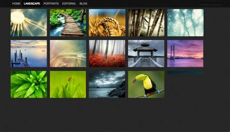 joomla template with gallery 10 best joomla themes for photographers