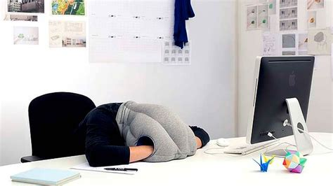 Ostrich Desk Pillow by 301 Moved Permanently