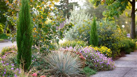 korean garden houston