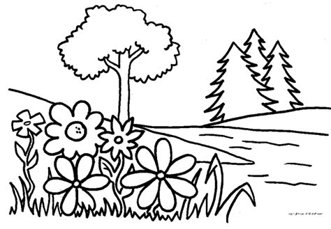 coloring pictures of flowers and trees the day of creation