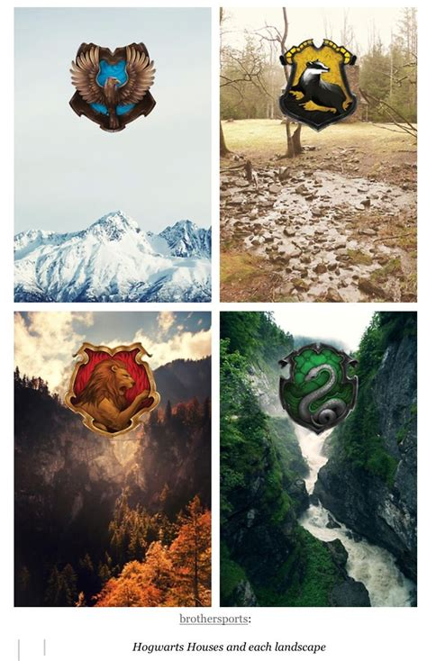 4 hogwarts houses 1000 images about four houses on pinterest harry potter