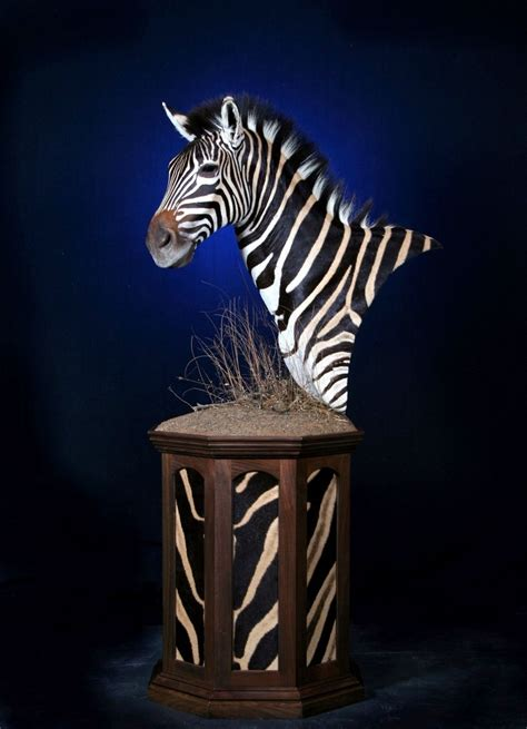 hand crafted taxidermy pedestal  summer mountain