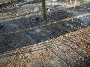 how to keep dog in yard puppy digging holes under fence escaping