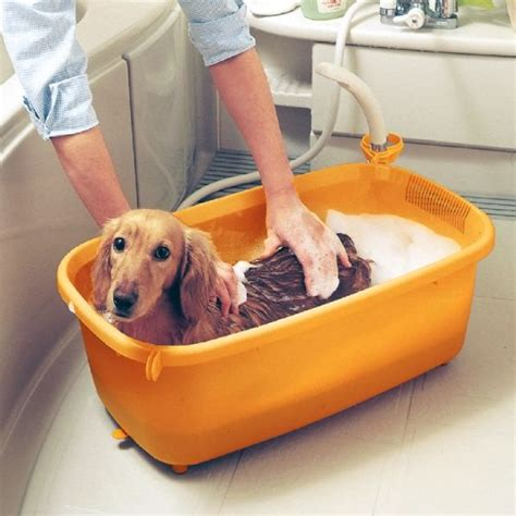 dogs and bathtubs iris dog bath tub small on sale free uk delivery