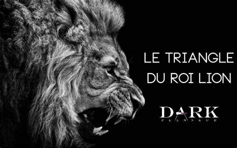startup lions au cã ur de l tech edition books le triangle du roi outil au service du reboot des