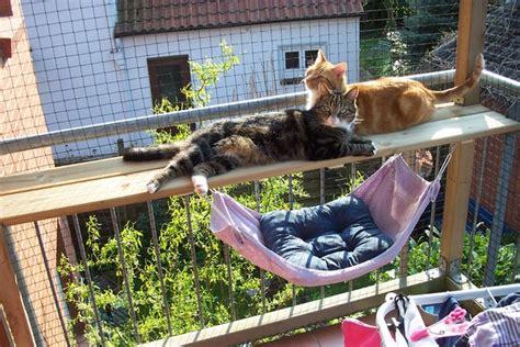 balkon verschönern für wenig geld balkon zum katzenparadies seite 2