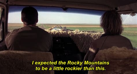 dumb and dumber on quot dumb and dumber quotes quotes