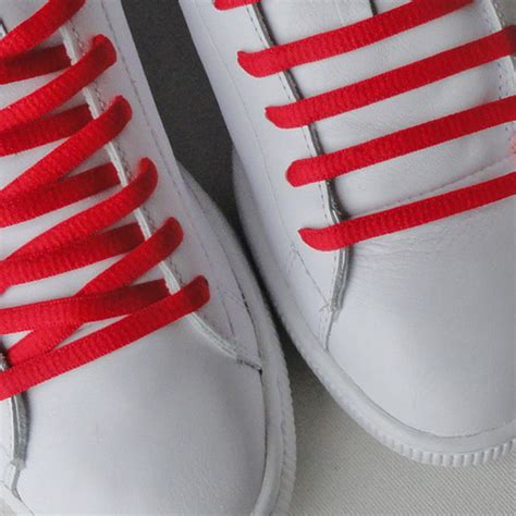 nike sb white shoe laces